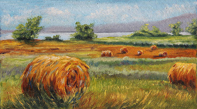 Summer Bales by Meaghan Troup
