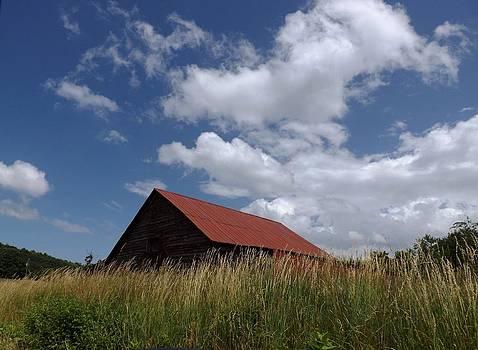 Summer Barn by Stan Wikle