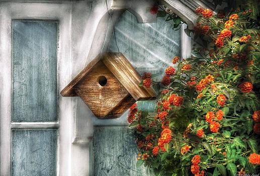 Mike Savad - Summer - Birdhouse - The Birdhouse