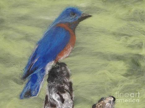 Summer Blue Bird by Shakti Chionis