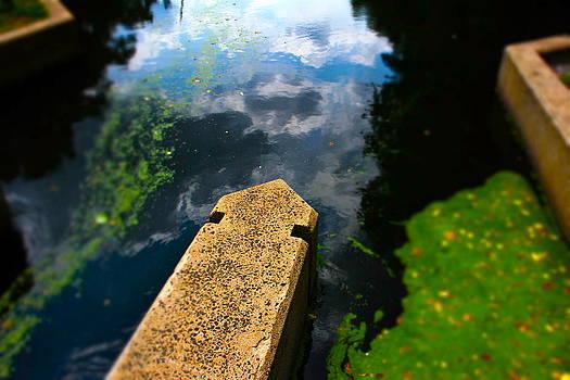 Summer Canal by Graham Hayward