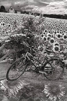 Debra and Dave Vanderlaan - Summer Cycling in Black and White