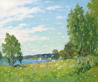 Summer day by Alexander Stolbov