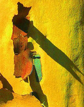 Margaret Saheed - Summer Eucalypt Abstract 17