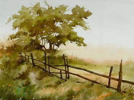 Summer Fog by Art Scholz