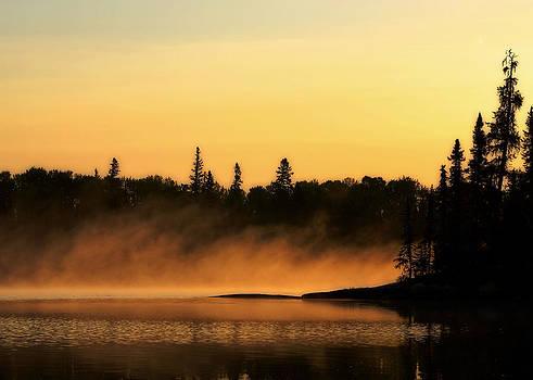 Summer Fog by Sarah Rodefeld