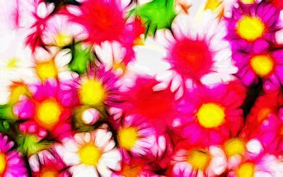 Stefan Kuhn - Summer Garden