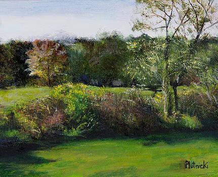 Summer Meadow II by Cindy Plutnicki