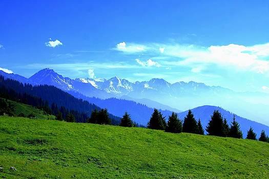 Summer mountain view by Daliya Photography