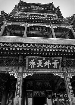 Summer Palace by Shawna Gibson