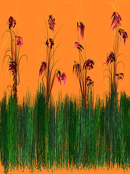 Summer by Saina Art