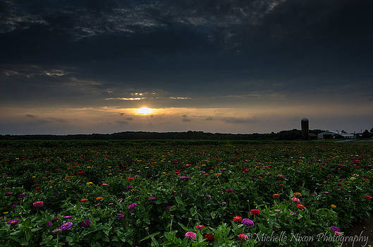 Summer Sunset by Michelle Nixon