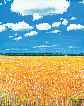 Summer Wheat by Shara  Wright
