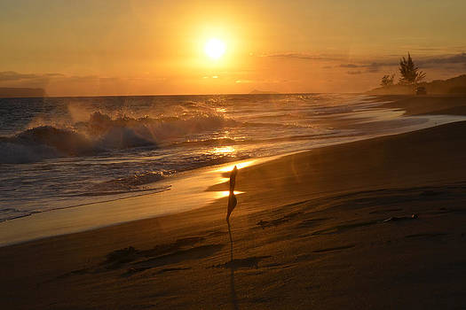 Sun and Surf by Dennis Begnoche