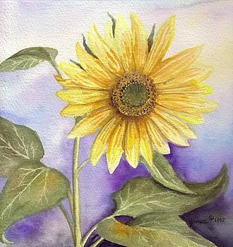 Sun Flower by Bonnie Fernandez