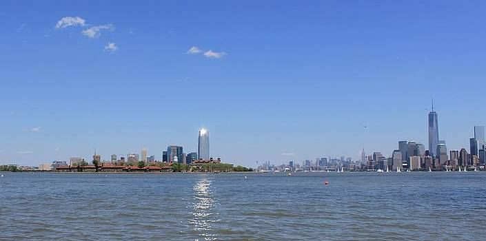 Sun-kissed Manhattan by Suzanne Perry