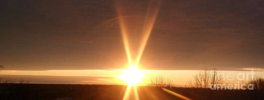 Gail Matthews - Sun Light Sun Bright