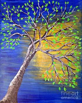 Sun Reflection by Susan Wahlfeldt