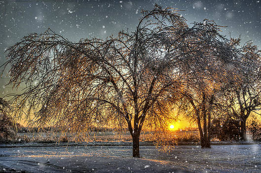Sun Rising Over Winter by Lisa Moore