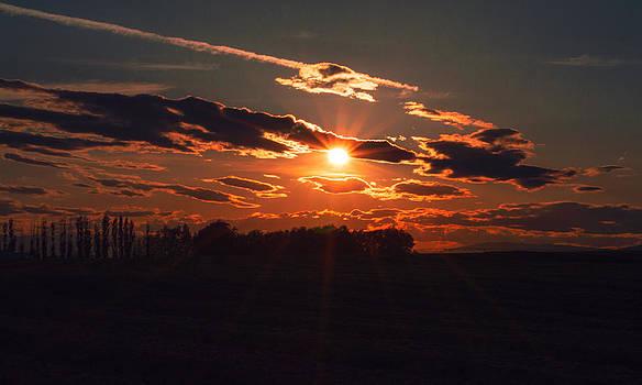 Sun set by Duane King