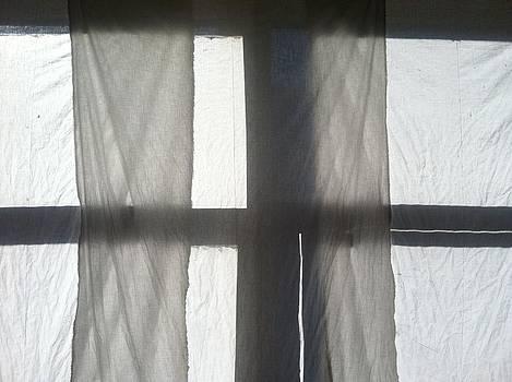Sun Up Through Luke's Curtains by Anna Villarreal Garbis