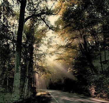 Sunbeams by Carol Kinkead