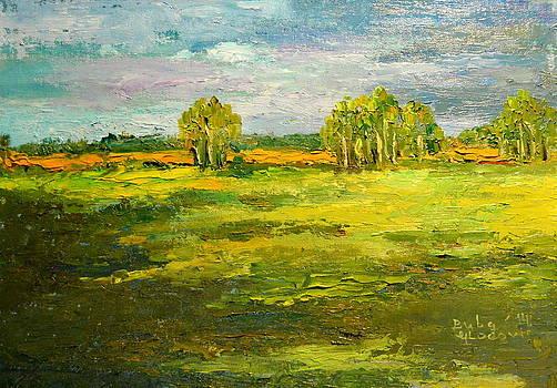 Suncana livada by Buba Glodjovic