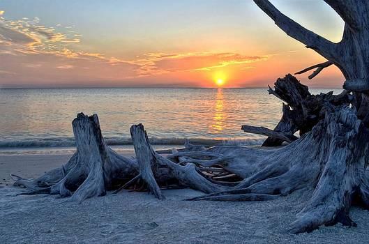 Sundown by Bob Jackson