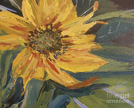 Sunflower by Beverly Belanger