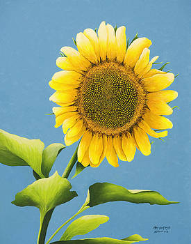 Sunflower Charm by Mary Ann King