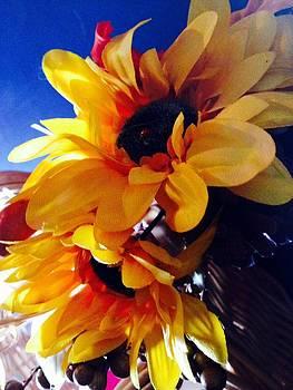 Sunflower by Denisse Del Mar Guevara