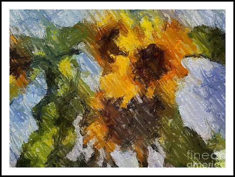 Sunflower from Galica 042013 by Arif Zenun Shabani