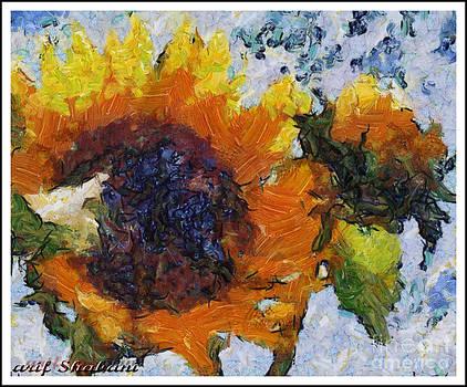 Sunflower from Galica by Arif Zenun Shabani