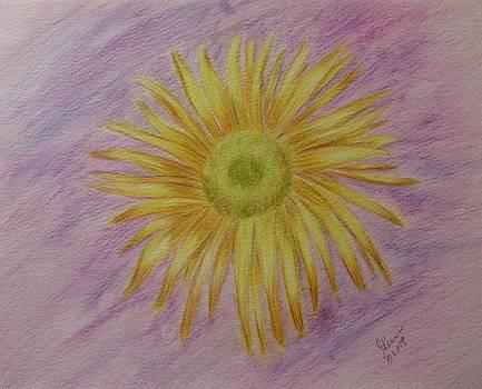 Sunflower by Joann Renner