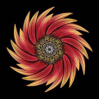 Sunflower Moulin Rouge IX Flower Mandala by David J Bookbinder