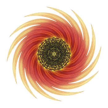 Sunflower Moulin Rouge VII Flower Mandala White by David J Bookbinder
