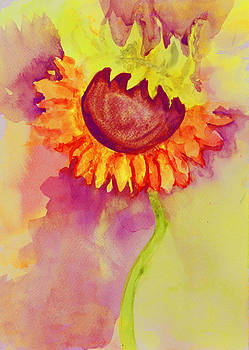 Sunflower by Moya Moon