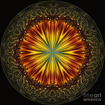 Sunflower Orb by Cindi Ressler