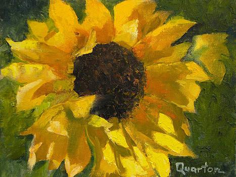 Sunflower Surprise by Lori Quarton