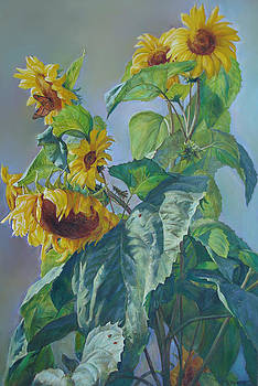 Sunflowers After the Rain by Svitozar Nenyuk