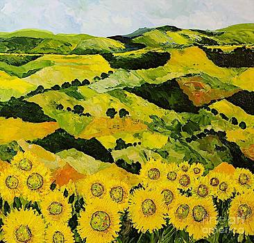 Sunflowers and Sunshine by Allan P Friedlander