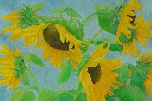 Sunflowers in the Wind 2 by K Joann Russell