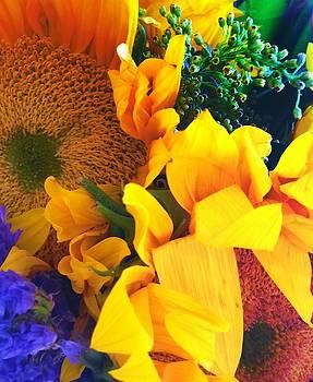 Sunflowers by  Renee McDaniel