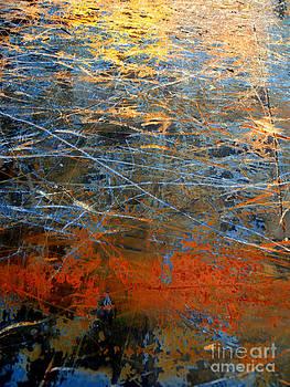 Sunlit Fibers by Robert Riordan