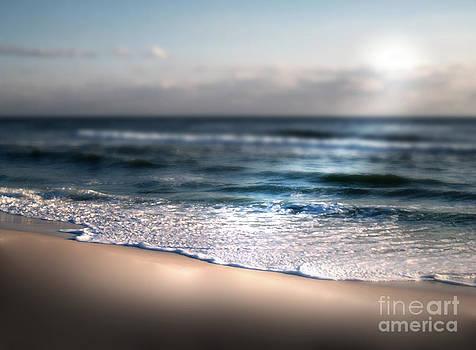 Sunlit Shore by Jeffery Fagan
