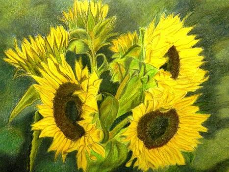 Sunny Days by Lori Ippolito