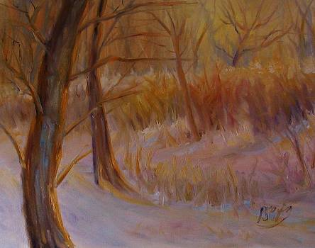 Sunny Glow by Patricia Seitz