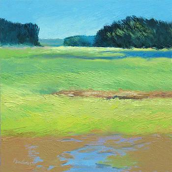Sunny Marsh by Sheila Psaledas