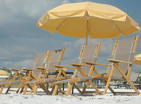 Sunny Position by Kathleen Mroz