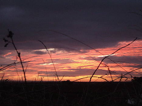 Sunrise At Boroughbridge by Martin Blakeley